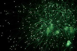 Fireworks704